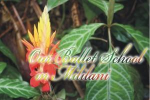 OurBalletSchoolInMililani
